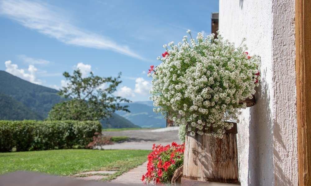 Una vacanza nelle Dolomiti v'incanterà